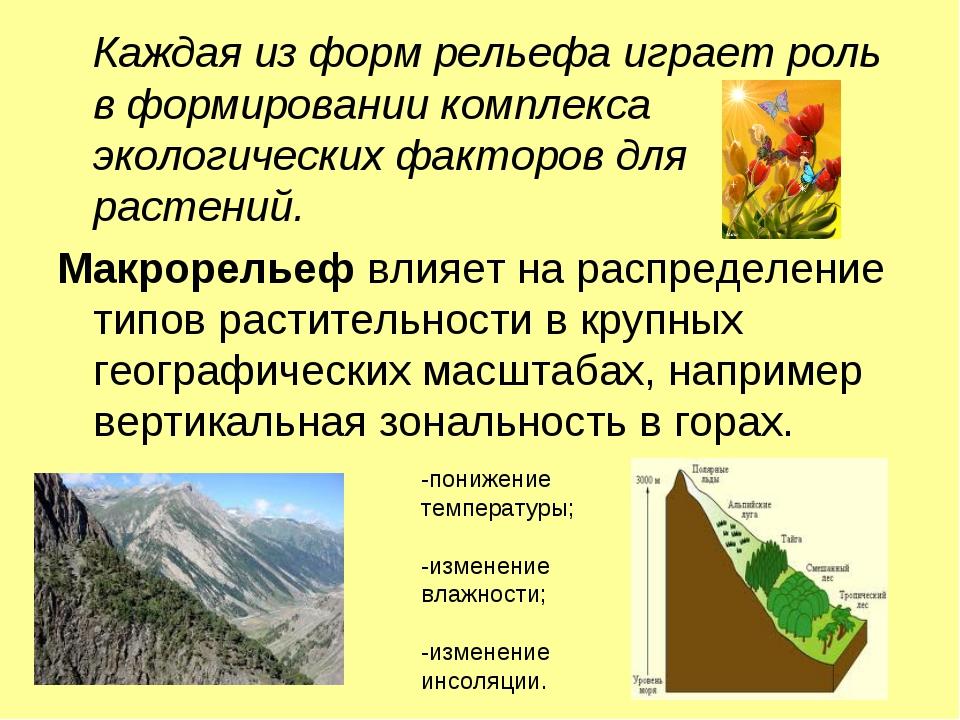 Каждая из форм рельефа играет роль в формировании комплекса экологических фа...