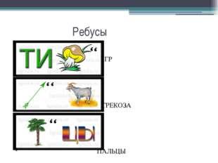 Ребусы Кклорторит ТИГР СТРЕКОЗА ПАЛЬЦЫ
