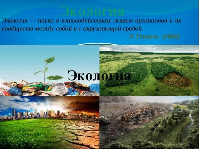 Экология — наука о взаимодействиях живых организмов и их сообществ между собо...