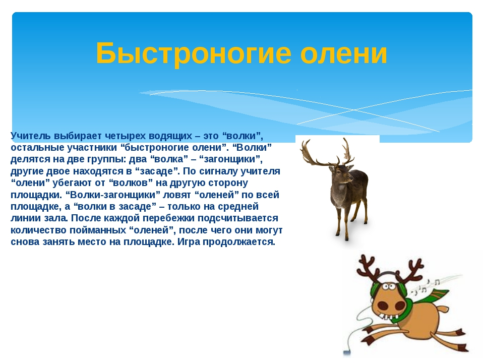 """Учитель выбирает четырех водящих – это """"волки"""", остальные участники """"быстрон..."""