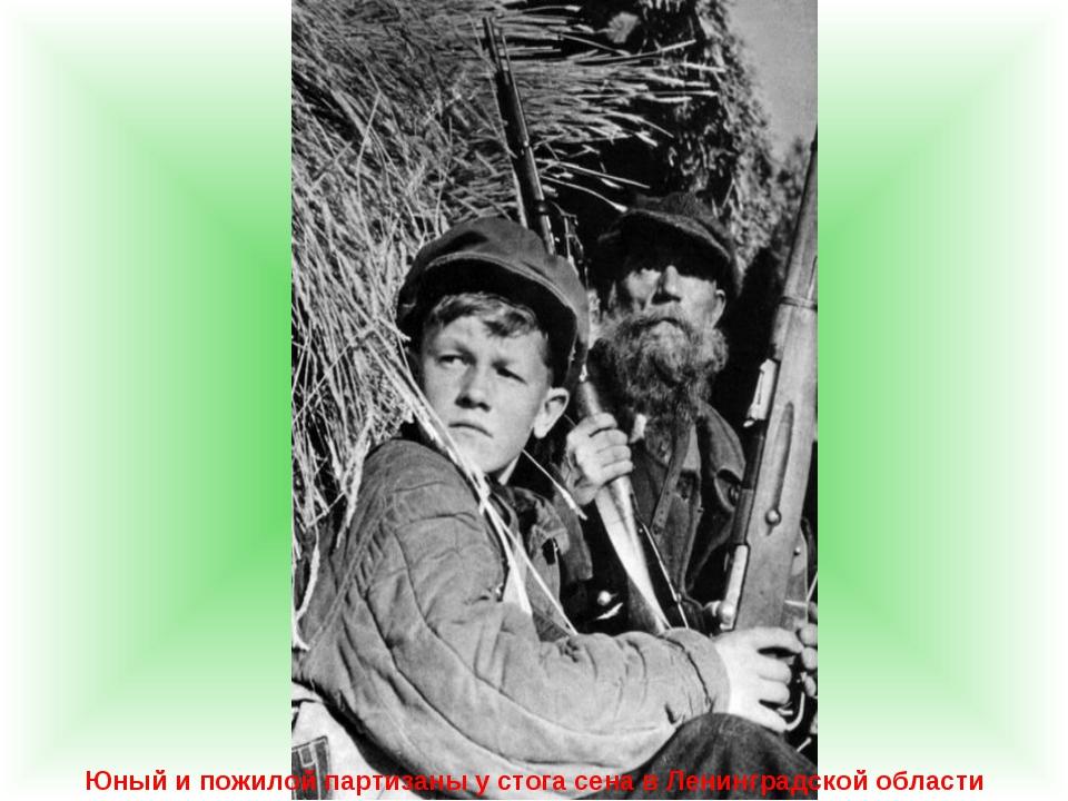Юный и пожилой партизаны у стога сена в Ленинградской области