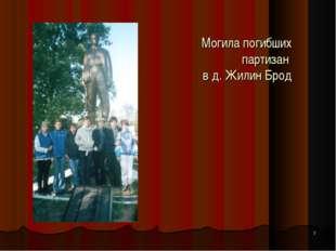 * Могила погибших партизан в д. Жилин Брод