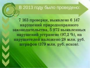 7 163 проверки, выявлено 6 147 нарушений природоохранного законодательства,