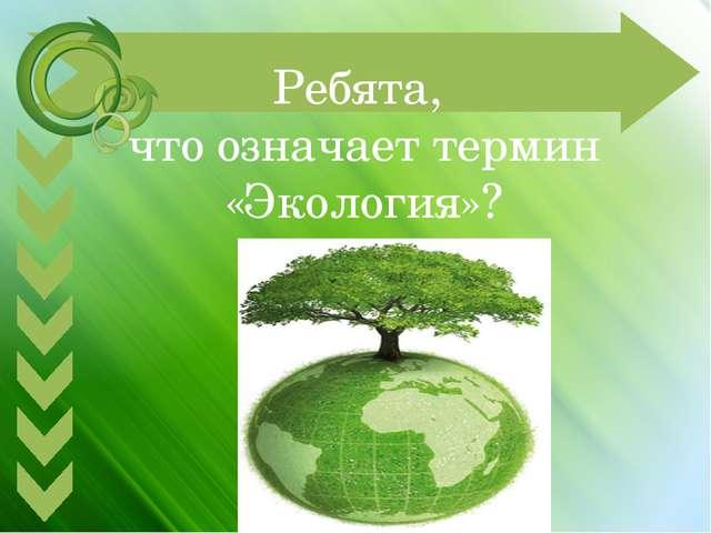 Ребята, что означает термин «Экология»?