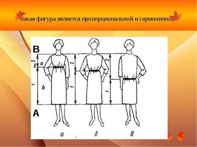 Какая фигура является пропорциональной и гармоничной? В А