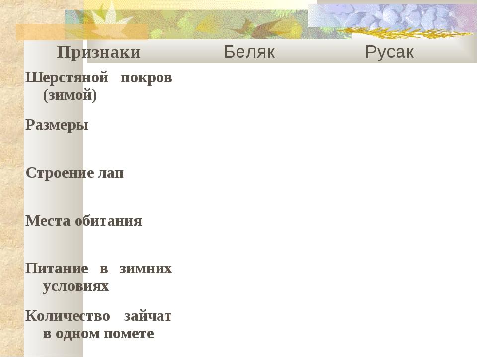 ПризнакиБелякРусак Шерстяной покров (зимой) Размеры Строение лап Мест...