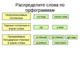 Распределите слова по орфограммам Непроизносимые согласные Парные согласные в