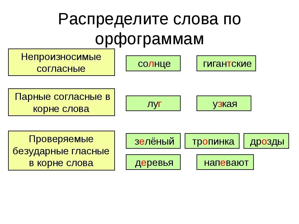 Распределите слова по орфограммам Непроизносимые согласные Парные согласные в...