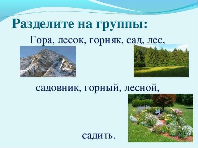 Разделите на группы: Гора, лесок, горняк, сад, лес, садовник, горный, лесной,...