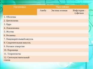 Органоиды Простейшие  Амеба Эвглена зеленая Инфузория - туфелька 1. Обо