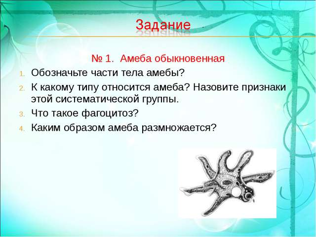 № 1. Амеба обыкновенная Обозначьте части тела амебы? К какому типу относится...