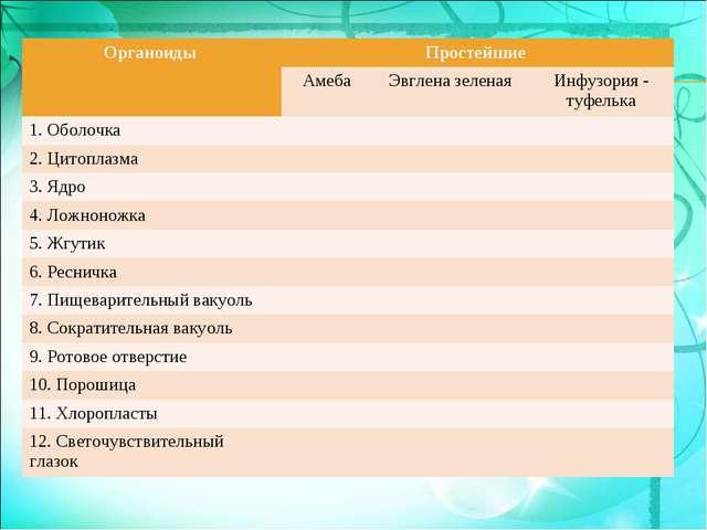Органоиды Простейшие  Амеба Эвглена зеленая Инфузория - туфелька 1. Обо...