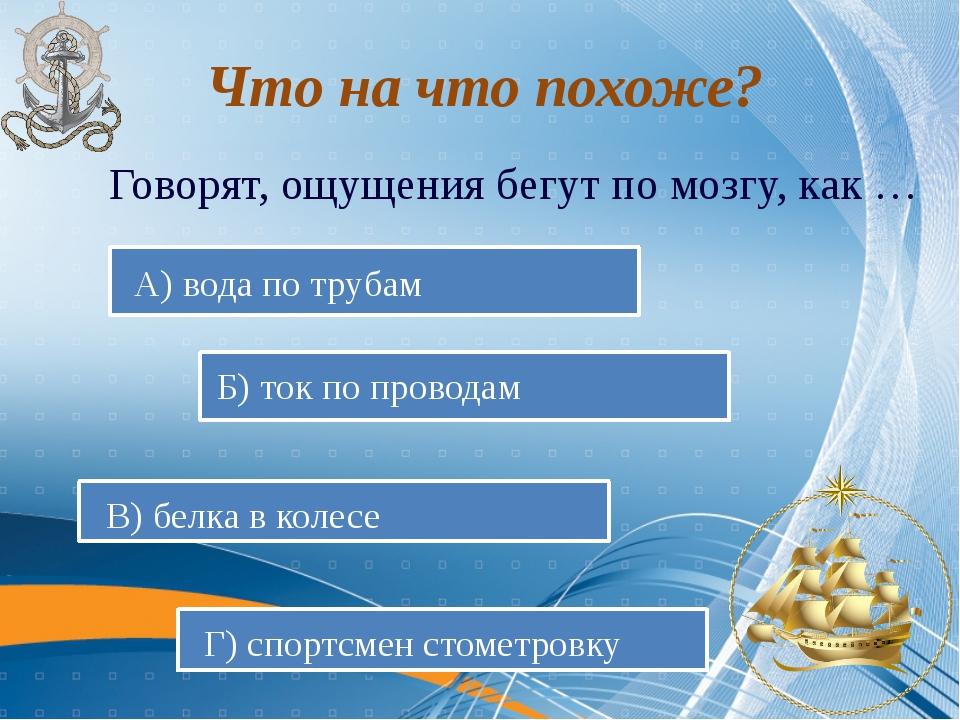 Говорят, ощущения бегут по мозгу, как … А) вода по трубам Б) ток по проводам...