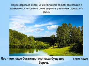 Пород деревьев много. Они отличаются своими свойствами и применяются человеко