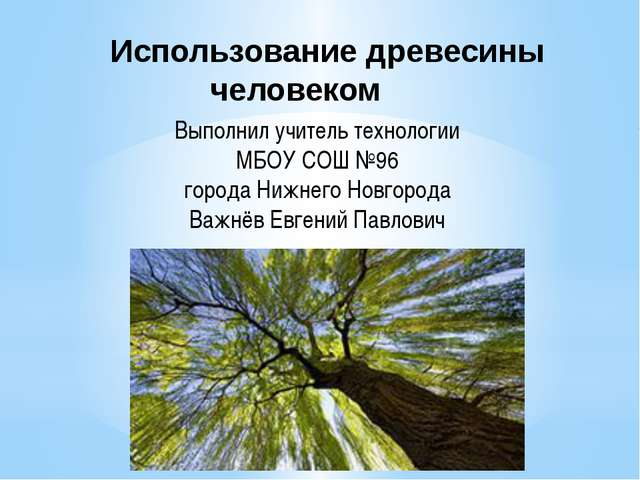 Использование древесины человеком Выполнил учитель технологии МБОУ СОШ №...