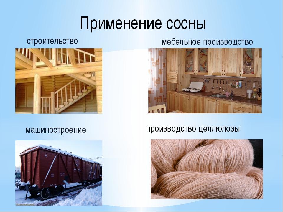 Применение сосны строительство мебельное производство машиностроение произво...