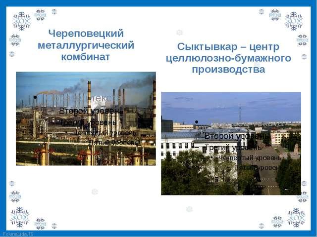 Череповецкий металлургический комбинат Сыктывкар – центр целлюлозно-бумажного...
