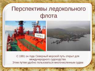 Перспективы ледокольного флота С 1991 он года Северный морской путь открыт дл