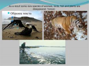 As a result some rare species of animals, birds, fish and plants are disappea