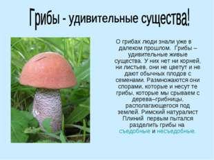 О грибах люди знали уже в далеком прошлом.Грибы – удивительные живые сущест