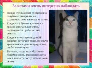 За котами очень интересно наблюдать Васька очень любит охотиться за голубями: