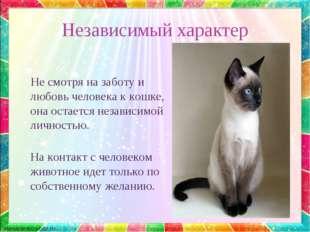 Независимый характер Не смотря на заботу и любовь человека к кошке, она остае