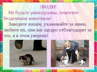 ЛЮДИ! Не будьте равнодушны, помогите бездомным животным! Заводите кошек, уха