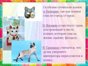 Особенно почитали кошек в Венеции, так как кошки спасли город от крыс. В Япо
