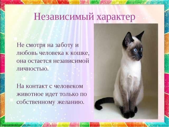 Независимый характер Не смотря на заботу и любовь человека к кошке, она остае...