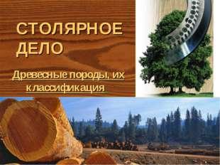 СТОЛЯРНОЕ ДЕЛО Древесные породы, их классификация