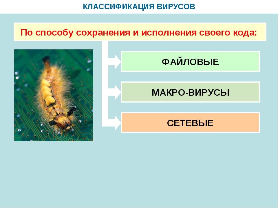 КЛАССИФИКАЦИЯ ВИРУСОВ По способу сохранения и исполнения своего кода: ФАЙЛОВЫ...