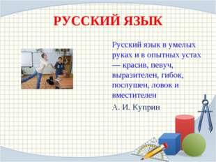 РУССКИЙ ЯЗЫК Русский язык в умелых руках и в опытных устах— красив, певуч, вы