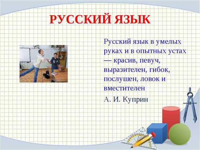 РУССКИЙ ЯЗЫК Русский язык в умелых руках и в опытных устах— красив, певуч, вы...