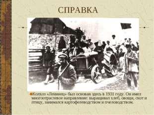 СПРАВКА Колхоз «Ленинец» был основан здесь в 1931 году. Он имел многоотраслев
