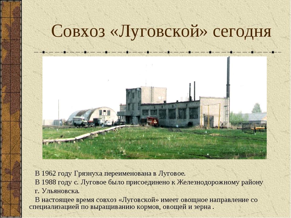 Совхоз «Луговской» сегодня В 1962 году Грязнуха переименована в Луговое. В 19...