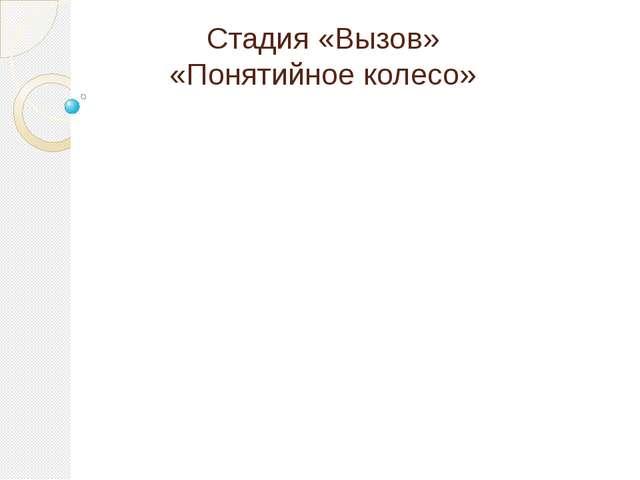 Стадия «Вызов» «Понятийное колесо»