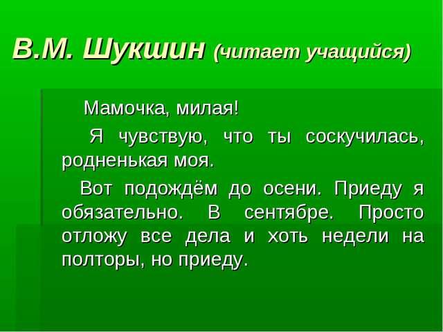 В.М. Шукшин (читает учащийся) Мамочка, милая! Я чувствую, что ты соскучилась...