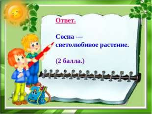 Ответ. Сосна — светолюбивое растение. (2 балла.)