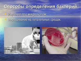 Способы определения бактерий Изучение под микроскопом; Выращивание на питател