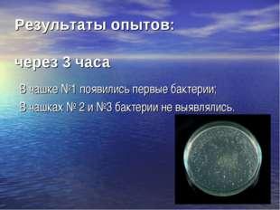 В чашке №1 появились первые бактерии; В чашках № 2 и №3 бактерии не выявляли