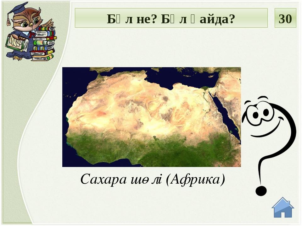 Үнді мұхиты (Африка, Антарктида, Евразия және Аустралия) Бұл не? Бұл қайда? 40