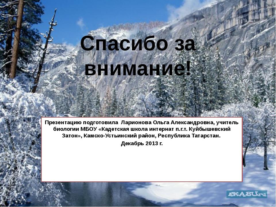 Спасибо за внимание! Презентацию подготовила Ларионова Ольга Александровна, у...