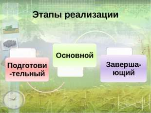 Этапы реализации