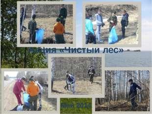 Акция «Чистый лес» Май 2014