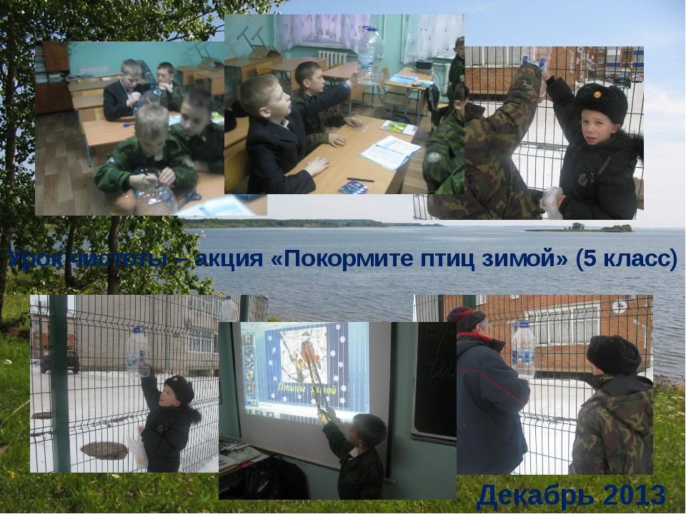 Урок чистоты – акция «Покормите птиц зимой» (5 класс) Декабрь 2013