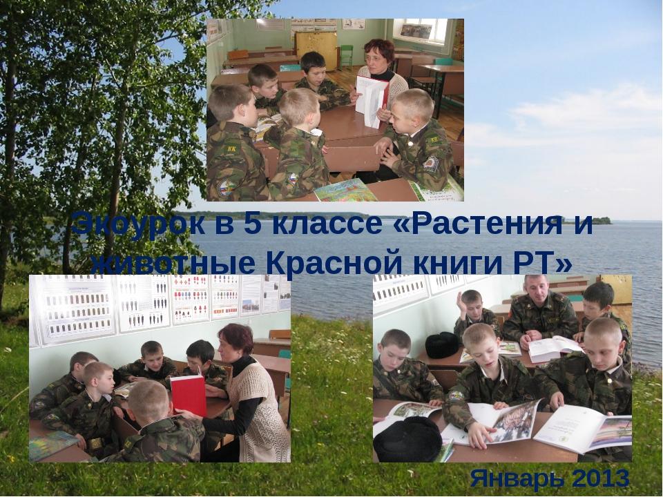Экоурок в 5 классе «Растения и животные Красной книги РТ» Январь 2013