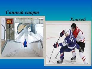 Санный спорт Хоккей