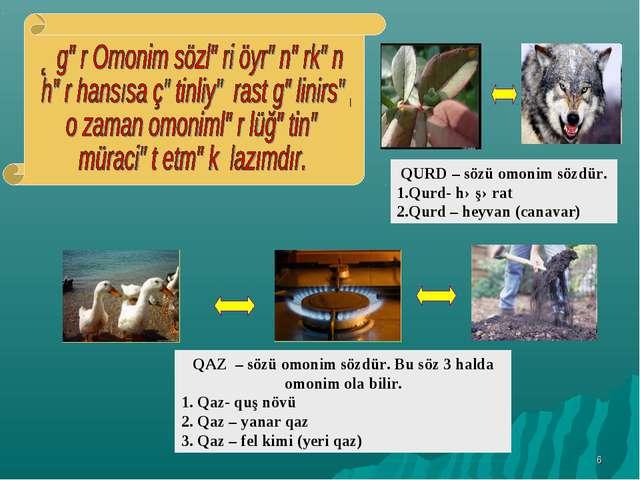 * QURD – sözü omonim sözdür. 1.Qurd- həşərat 2.Qurd – heyvan (canavar) QAZ –...