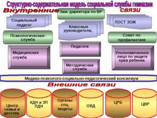 Педагоги Зам. директора по ВР Совет по профилактике ПОСТ ЗОЖ Социальный педаг