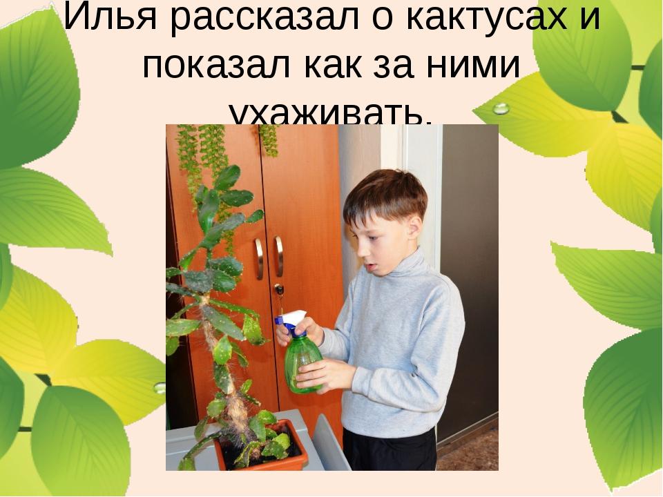 Илья рассказал о кактусах и показал как за ними ухаживать.